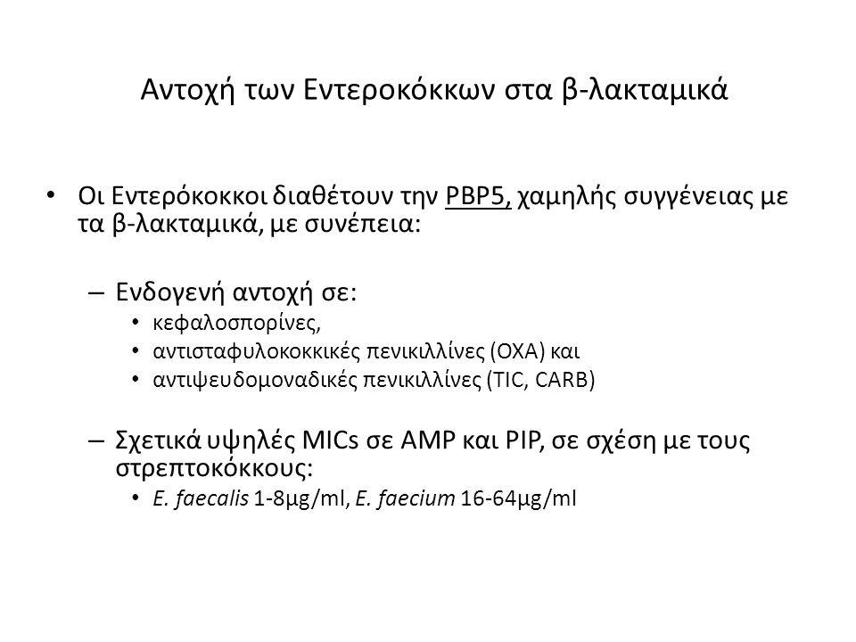 Αντοχή των Εντεροκόκκων στα β-λακταμικά Οι Εντερόκοκκοι διαθέτουν την PBP5, χαμηλής συγγένειας με τα β-λακταμικά, με συνέπεια: – Ενδογενή αντοχή σε: κ
