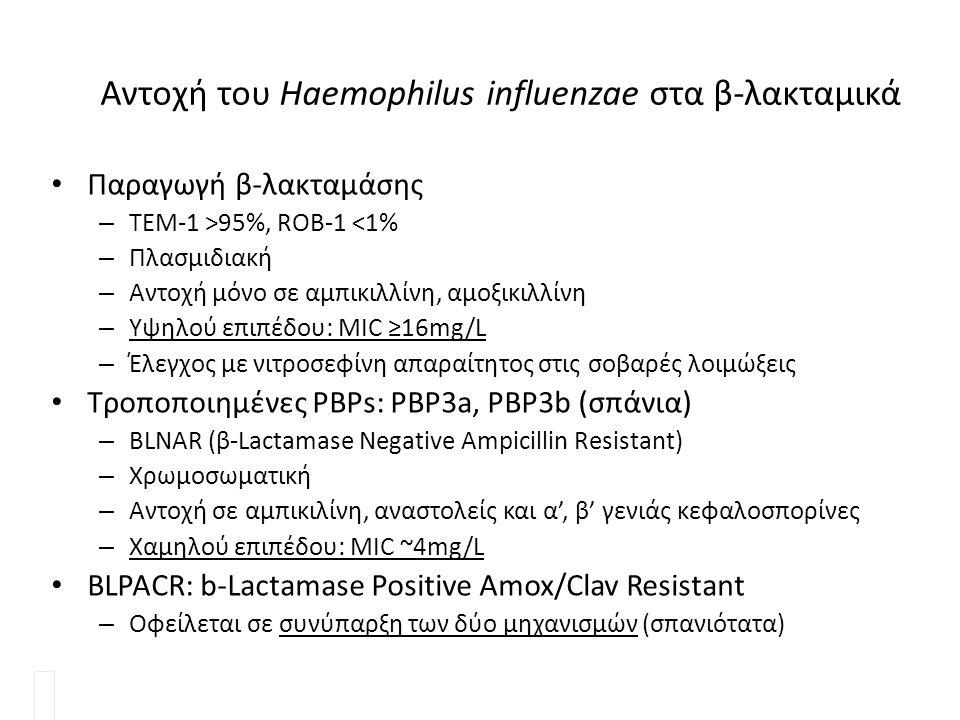 Αντοχή του Haemophilus influenzae στα β-λακταμικά Παραγωγή β-λακταμάσης – ΤΕΜ-1 >95%, ROB-1 <1% – Πλασμιδιακή – Αντοχή μόνο σε αμπικιλλίνη, αμοξικιλλί