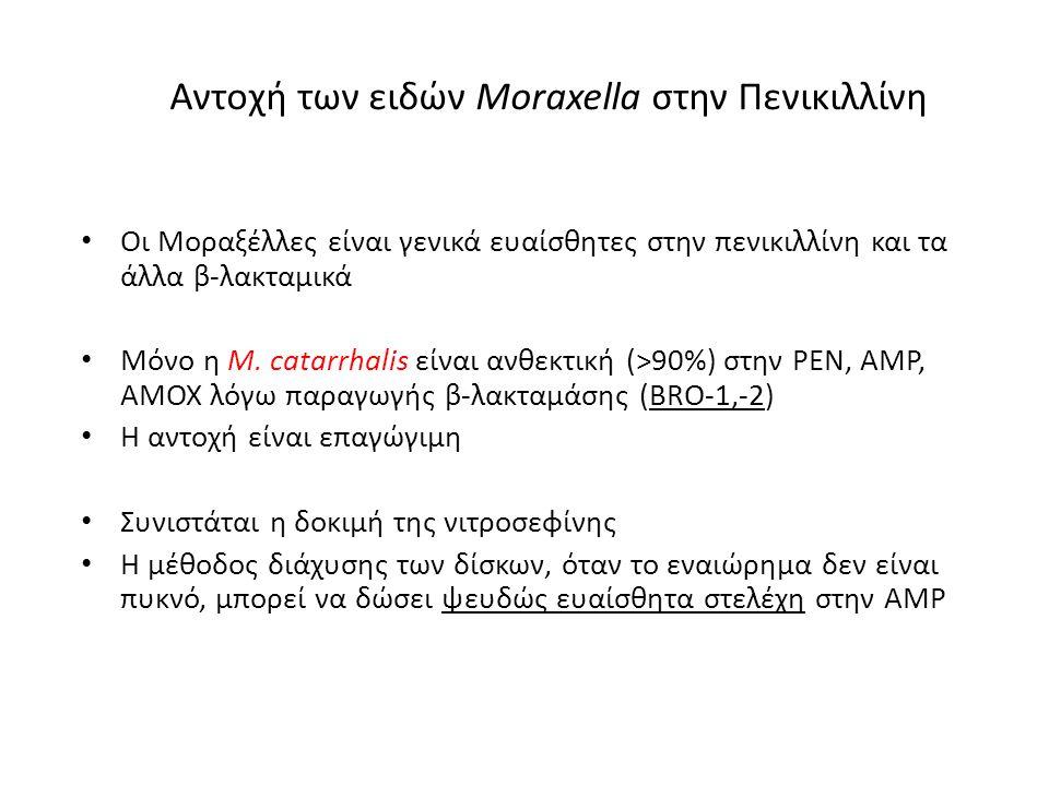 Αντοχή των ειδών Moraxella στην Πενικιλλίνη Oι Μοραξέλλες είναι γενικά ευαίσθητες στην πενικιλλίνη και τα άλλα β-λακταμικά Μόνο η M. catarrhalis είναι