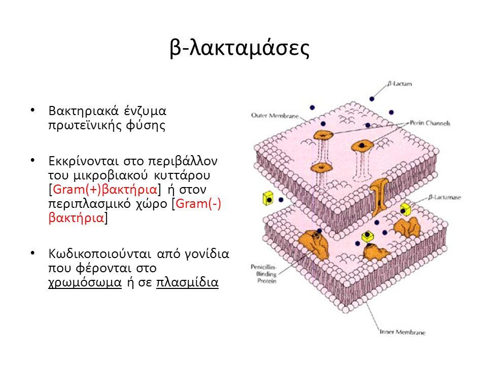 β-λακταμάσες Βακτηριακά ένζυμα πρωτεϊνικής φύσης Εκκρίνονται στο περιβάλλον του μικροβιακού κυττάρου [Gram(+)βακτήρια] ή στον περιπλασμικό χώρο [Gram(