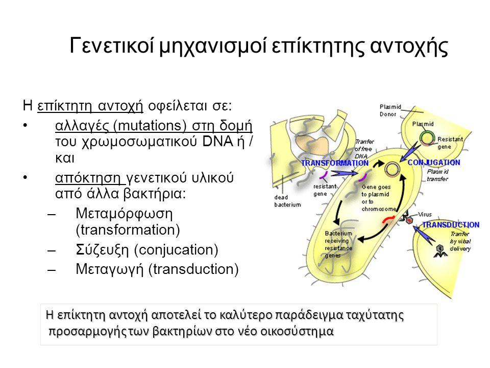 Βιοχημικοί μηχανισμοί επίκτητης αντοχής στα β-λακταμικά Τροποποίηση του στόχου δράσης – PBPs – Απαντάται συνήθως στα Gram (+) βακτήρια και συμβαίνει με: 1.Απόκτηση νέων – ξένων PBPs 2.Ανασυνδυασμό PBPs μεταμόρφωση 3.Σημειακές μεταλλαγές στις υπάρχουσες PBPs 4.Υπερπαραγωγή PBP (σχετικά σπάνια) Παραγωγή β-λακταμασών – Απαντάται συνήθως στα Gram (-) βακτήρια Μειωμένη διαπερατότητα – απώλεια πορινών (πχ IMP) Συστήματα αντλιών ενεργητικής αποβολής του αντιβιοτικού (πχ MEM)