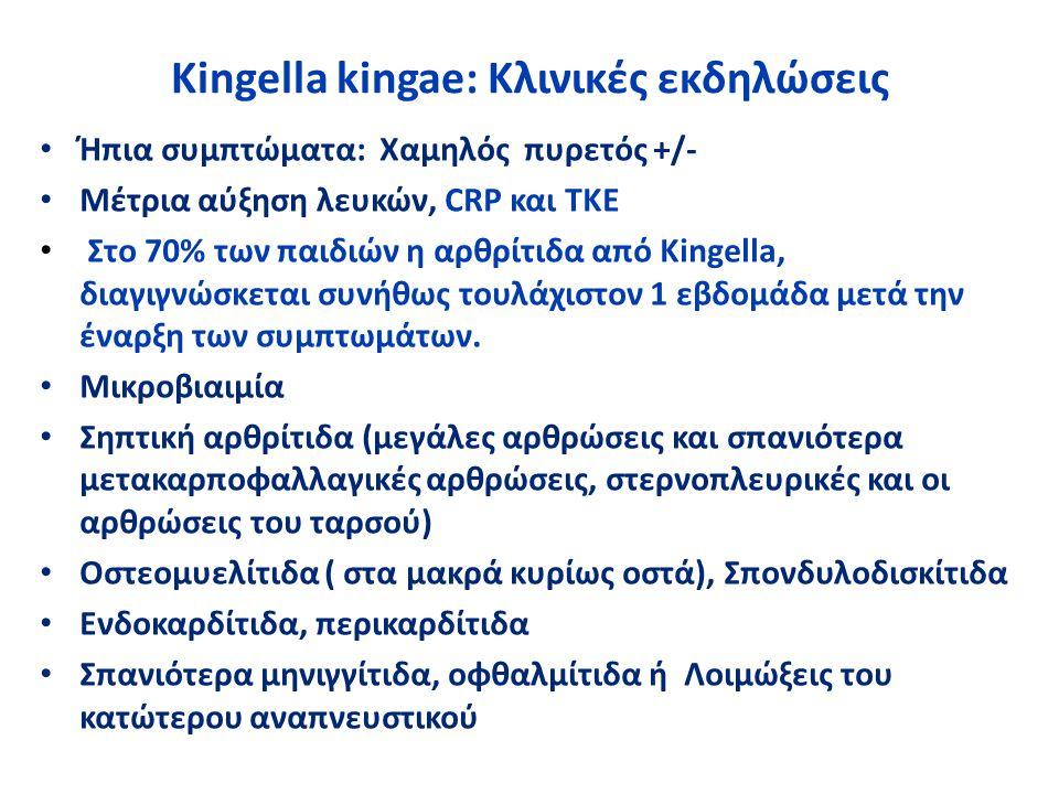 Kingella kingae: Κλινικές εκδηλώσεις Ήπια συμπτώματα: Χαμηλός πυρετός +/- Μέτρια αύξηση λευκών, CRP και ΤΚΕ Στο 70% των παιδιών η αρθρίτιδα από Kingel