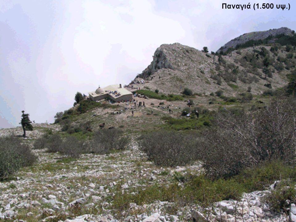 Παναγιά (1.500 υψ.)