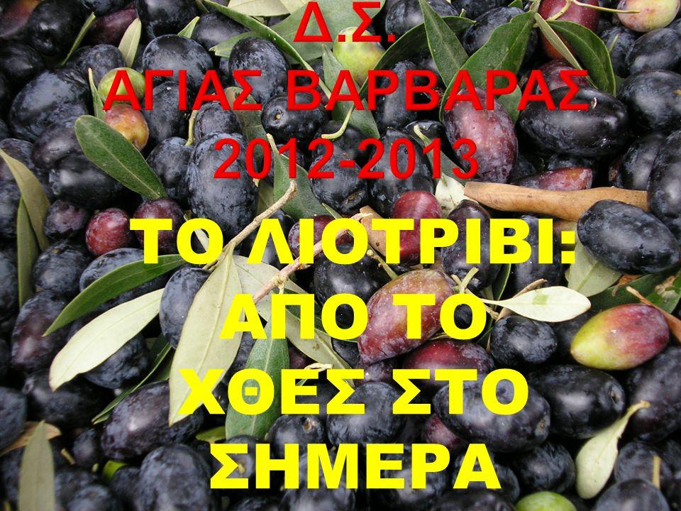 Οι αρχαίοι Έλληνες γνώριζαν να καλλιεργούν την ελιά, να βγάζουν λάδι, να τρώνε ελιές.