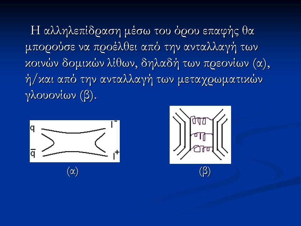 Η αλληλεπίδραση μέσω του όρου επαφής θα μπορούσε να προέλθει από την ανταλλαγή των κοινών δομικών λίθων, δηλαδή των πρεονίων (α), ή/και από την ανταλλ