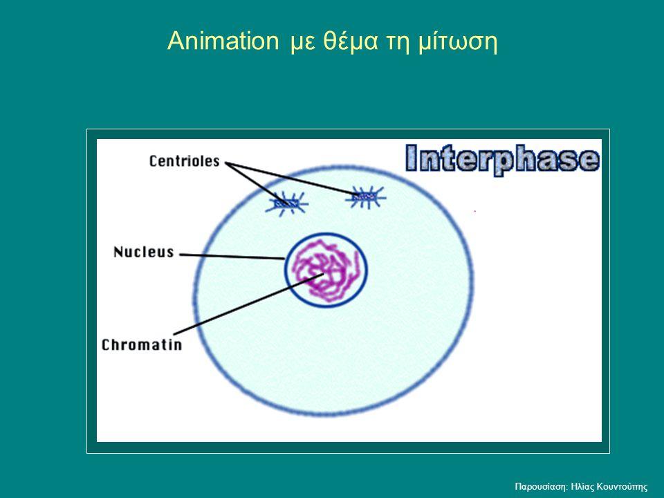 Animation με θέμα τη μίτωση Παρουσίαση: Ηλίας Κουντούπης