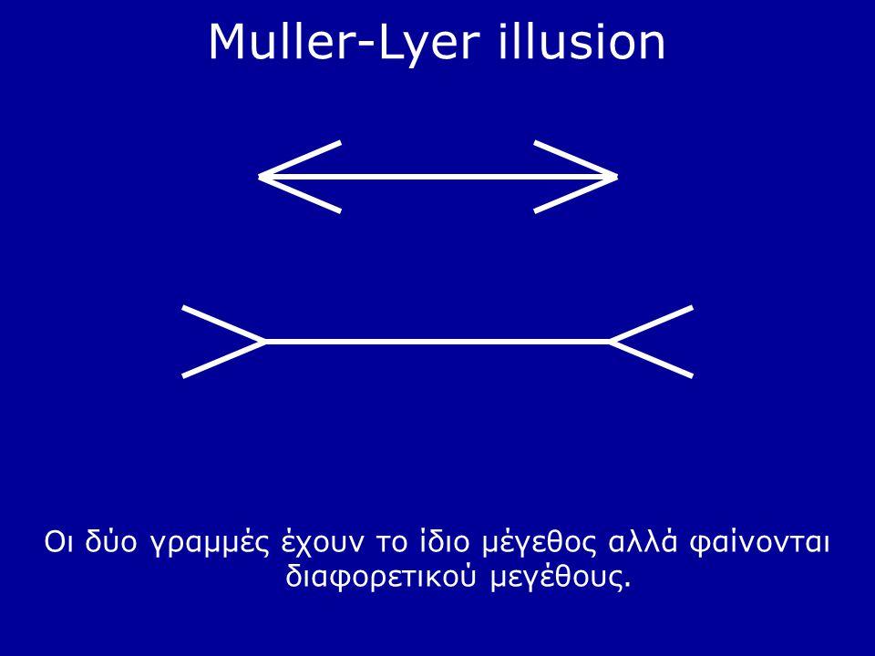 Muller-Lyer illusion Οι δύο γραμμές έχουν το ίδιο μέγεθος αλλά φαίνονται διαφορετικού μεγέθους.