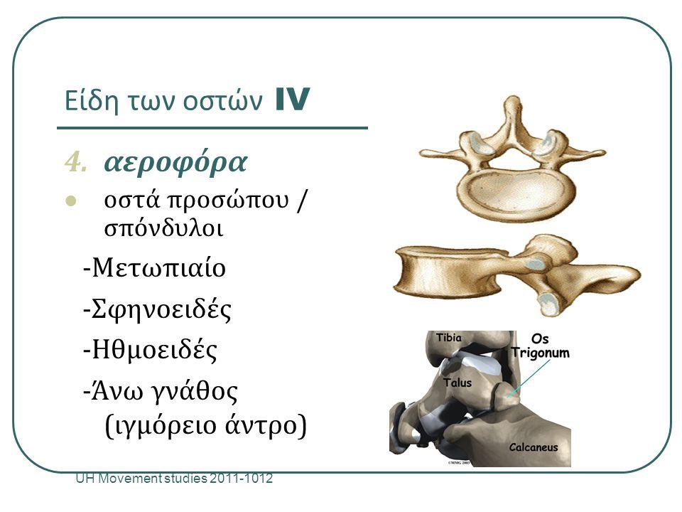 Είδη των οστών IV UH Movement studies 2011-1012 11 4.αεροφόρα οστά προσώπου / σπόνδυλοι -Μετωπιαίο -Σφηνοειδές -Ηθμοειδές -Άνω γνάθος (ιγμόρειο άντρο)