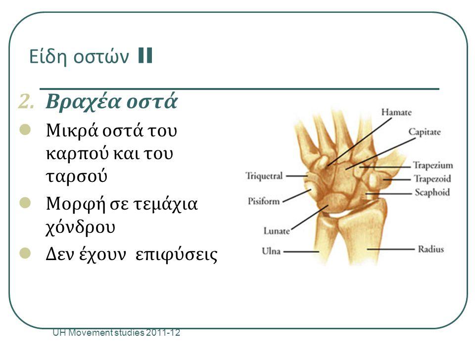 Είδη οστών II 2.Βραχέα οστά Μικρά οστά του καρπού και του ταρσού Μορφή σε τεμάχια χόνδρου Δεν έχουν επιφύσεις UH Movement studies 2011-12 9