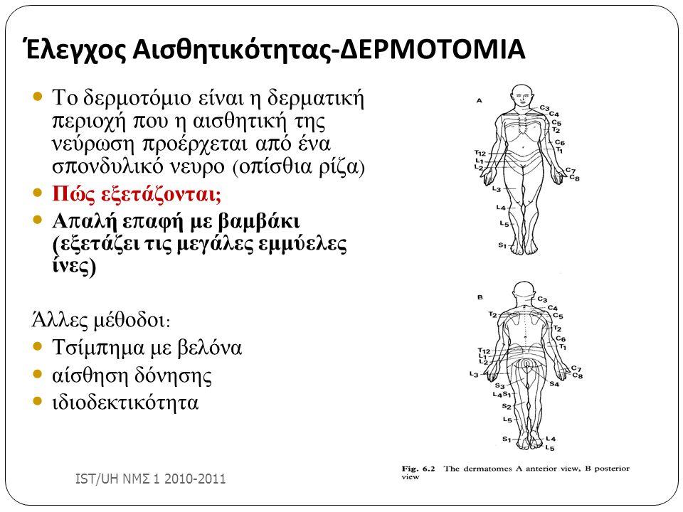Έλεγχος Αισθητικότητας-ΔΕΡΜΟΤΟΜΙΑ IST/UH ΝΜΣ 1 2010-2011 Το δερμοτόμιο είναι η δερματική π εριοχή π ου η αισθητική της νεύρωση π ροέρχεται α π ό ένα σ
