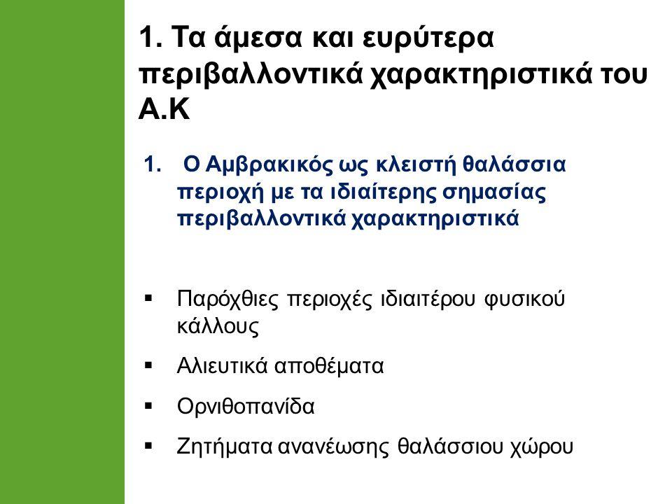 1. Τα άμεσα και ευρύτερα περιβαλλοντικά χαρακτηριστικά του Α.Κ 1.