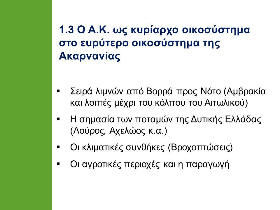 ΠΗΓΗ : Λουκάκης, Θεοδωρά, 2005α : 58