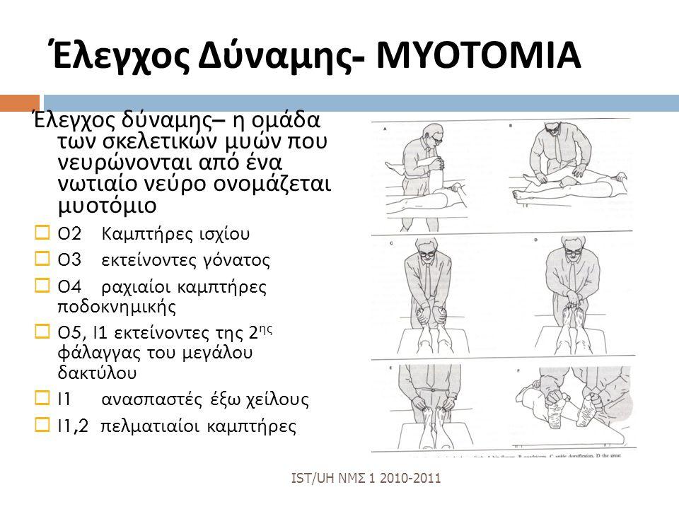 Έλεγχος Δύναμης - ΜΥΟΤΟΜΙΑ Έλεγχος δύναμης – η ομάδα των σκελετικών μυών που νευρώνονται από ένα νωτιαίο νεύρο ονομάζεται μυοτόμιο  Ο 2 Καμπτήρες ισχίου  Ο 3 εκτείνοντες γόνατος  Ο 4 ραχιαίοι καμπτήρες ποδοκνημικής  Ο 5, Ι 1 εκτείνοντες της 2 ης φάλαγγας του μεγάλου δακτύλου  Ι 1 ανασπαστές έξω χείλους  Ι 1,2 πελματιαίοι καμπτήρες IST/UH ΝΜΣ 1 2010-2011