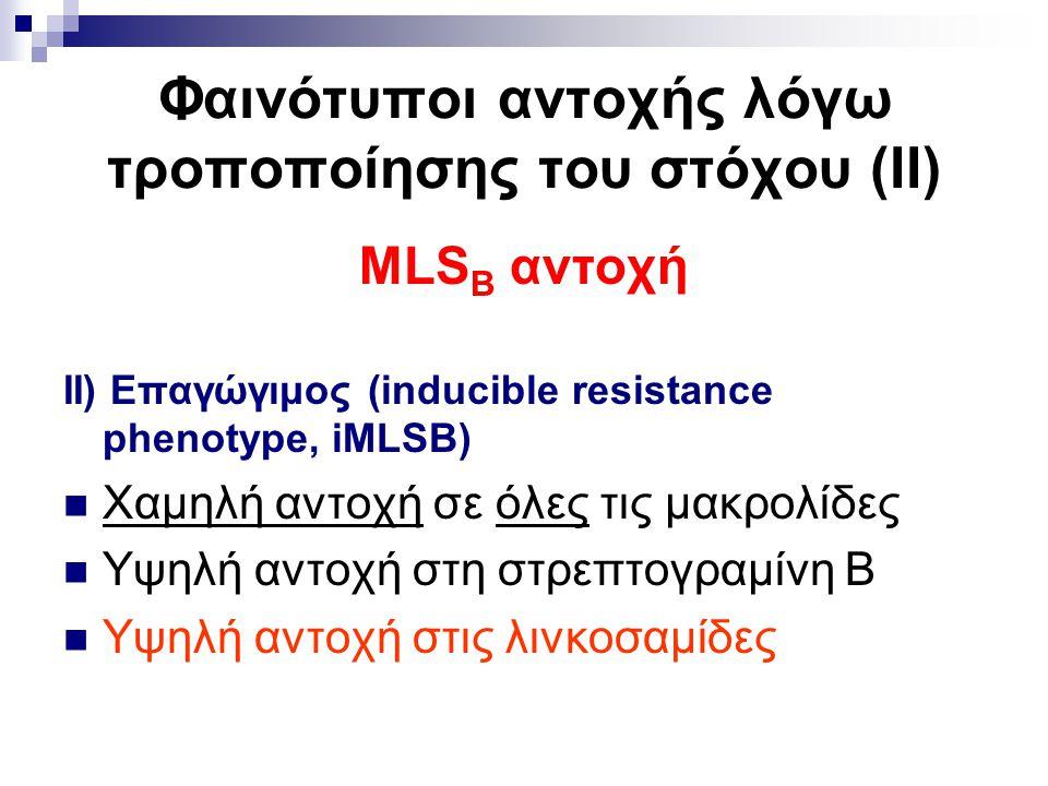 Φαινότυποι αντοχής λόγω τροποποίησης του στόχου (ΙΙ) MLS B αντοχή ΙΙ) Επαγώγιμος (inducible resistance phenotype, iMLSB) Χαμηλή αντοχή σε όλες τις μακ