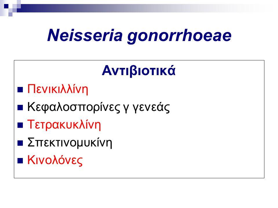 Αντιβιοτικά Πενικιλλίνη Κεφαλοσπορίνες γ γενεάς Τετρακυκλίνη Σπεκτινομυκίνη Κινολόνες