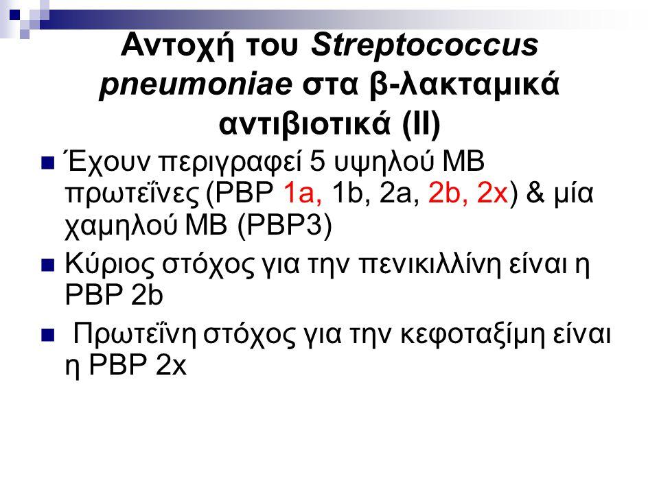 Αντοχή του Streptococcus pneumoniae στα β-λακταμικά αντιβιοτικά (ΙΙ) Έχουν περιγραφεί 5 υψηλού ΜΒ πρωτεΐνες (PBP 1a, 1b, 2a, 2b, 2x) & μία χαμηλού ΜΒ