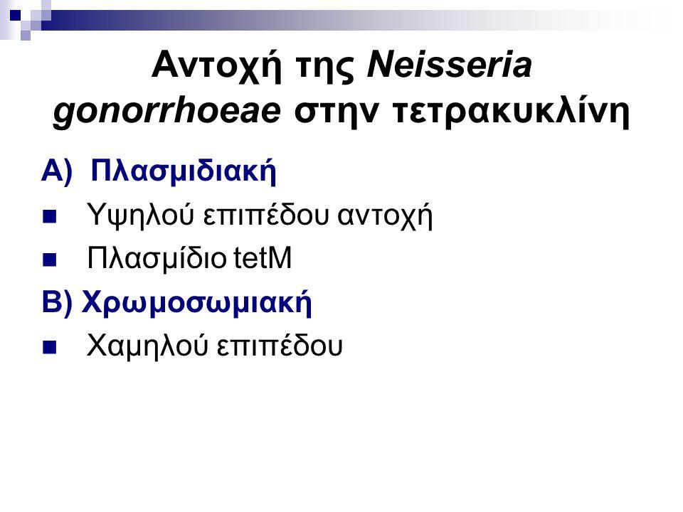 Αντοχή της Neisseria gonorrhoeae στην τετρακυκλίνη Α) Πλασμιδιακή Υψηλού επιπέδου αντοχή Πλασμίδιο tetM Β) Χρωμοσωμιακή Χαμηλού επιπέδου