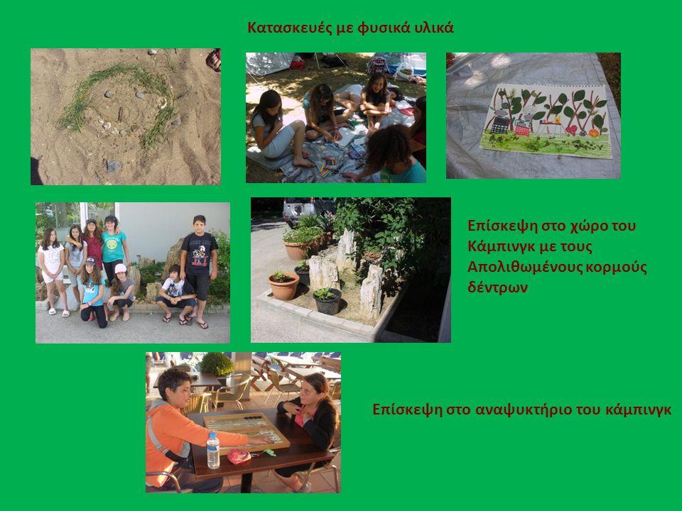 Κατασκευές με φυσικά υλικά Επίσκεψη στο χώρο του Κάμπινγκ με τους Απολιθωμένους κορμούς δέντρων Επίσκεψη στο αναψυκτήριο του κάμπινγκ