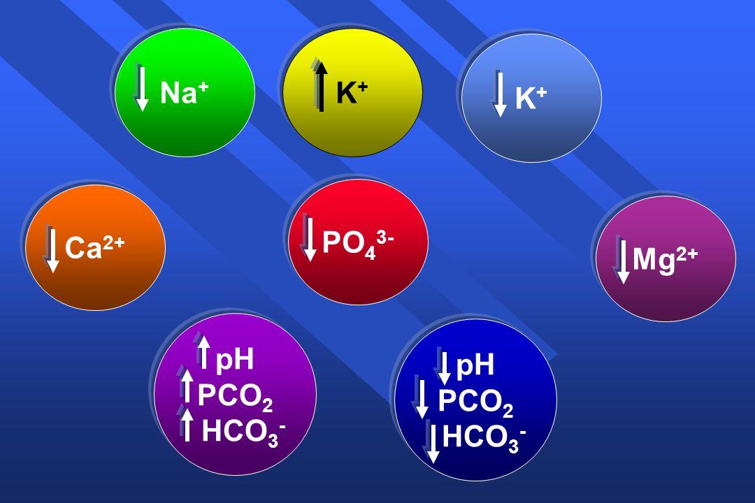 Νa+Νa+ Κ+Κ+ Κ+Κ+ Ca 2+ PO 4 3- Mg 2+ pH PCO 2 HCO 3 - pH PCO 2 HCO 3 -