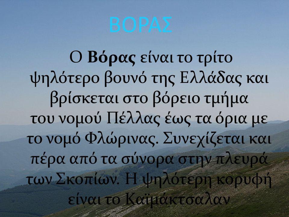 ΒΟΡΑΣ Ο Βόρας είναι το τρίτο ψηλότερο βουνό της Ελλάδας και βρίσκεται στο βόρειο τμήμα του νομού Πέλλας έως τα όρια με το νομό Φλώρινας. Συνεχίζεται κ