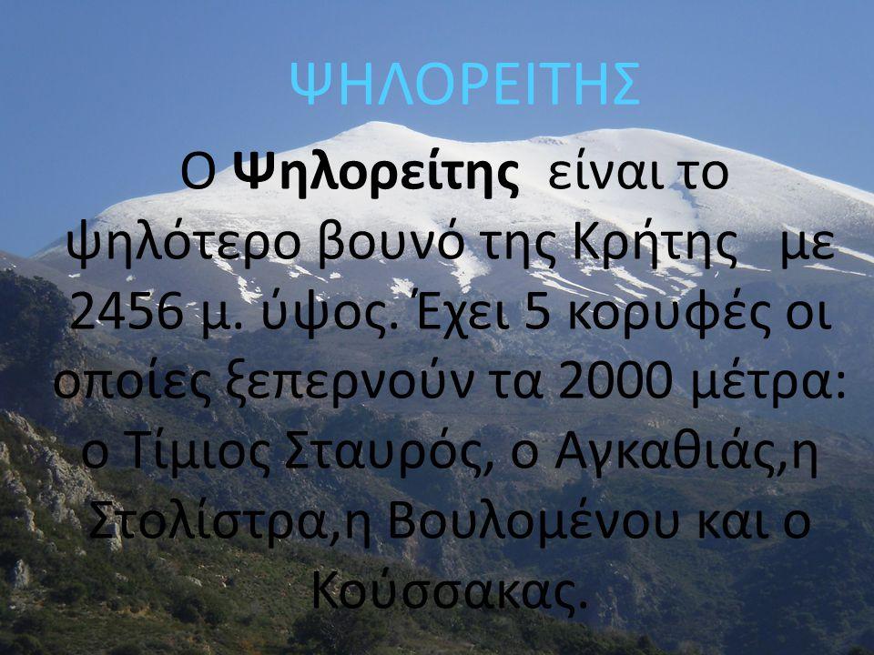 ΨΗΛΟΡΕΙΤΗΣ Ο Ψηλορείτης είναι το ψηλότερο βουνό της Κρήτης με 2456 μ. ύψος. Έχει 5 κορυφές οι οποίες ξεπερνούν τα 2000 μέτρα: ο Τίμιος Σταυρός, ο Αγκα