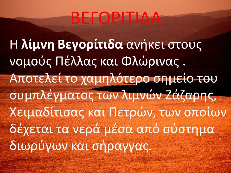 ΒΕΓΟΡΙΤΙΔΑ Η λίμνη Βεγορίτιδα ανήκει στους νομούς Πέλλας και Φλώρινας. Αποτελεί το χαμηλότερο σημείο του συμπλέγματος των λιμνών Ζάζαρης, Χειμαδίτισας