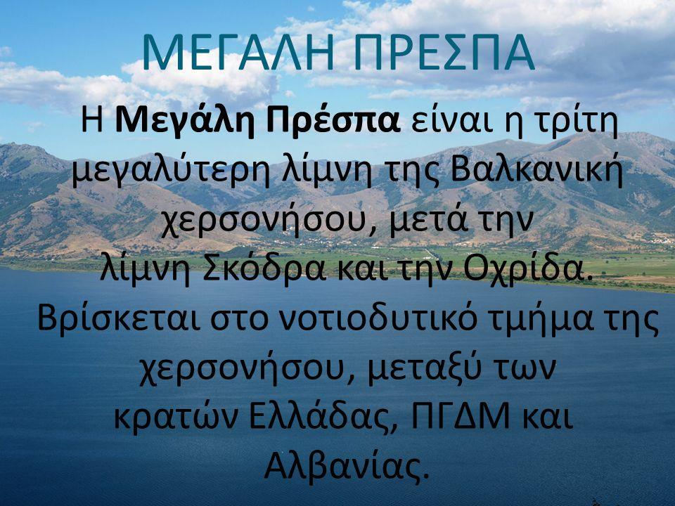 ΜΕΓΑΛΗ ΠΡΕΣΠΑ Η Μεγάλη Πρέσπα είναι η τρίτη μεγαλύτερη λίμνη της Βαλκανική χερσονήσου, μετά την λίμνη Σκόδρα και την Οχρίδα. Βρίσκεται στο νοτιοδυτικό