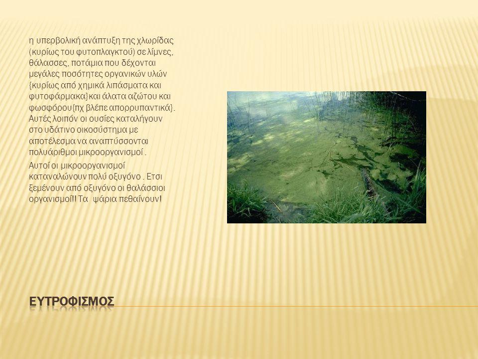 η υπερβολική ανάπτυξη της χλωρίδας (κυρίως του φυτοπλαγκτού) σε λίμνες, θάλασσες, ποτάμια που δέχονται μεγάλες ποσότητες οργανικών υλών {κυρίως από χημικά λιπάσματα και φυτοφάρμακα}και άλατα αζώτου και φωσφόρου{πχ βλέπε απορρυπαντικά}.