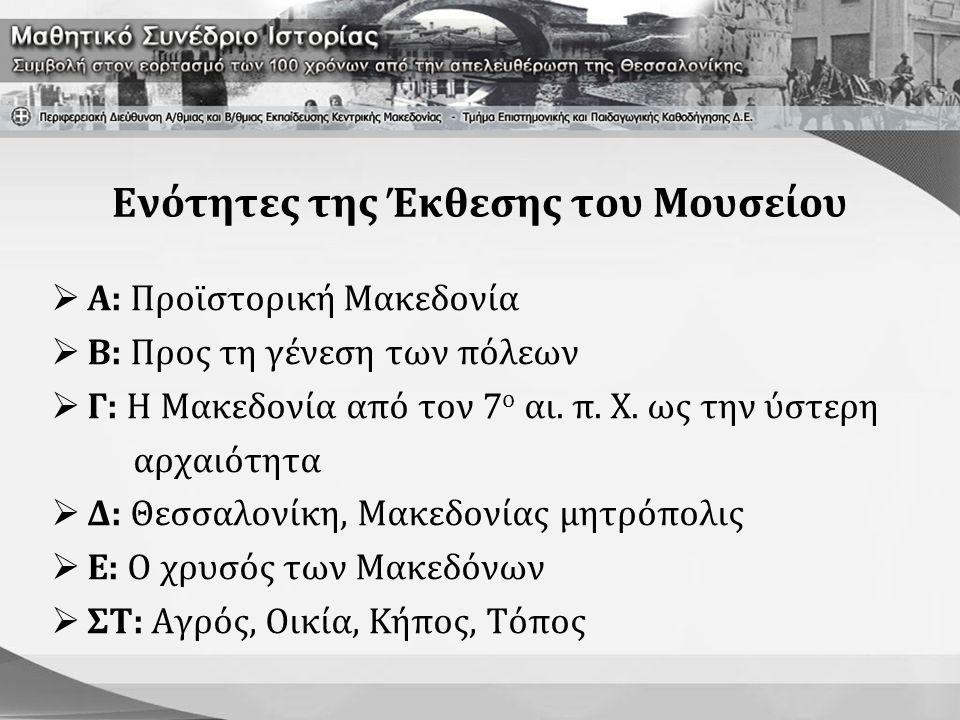 Προϊστορική Μακεδονία  Εκμαγεία κρανίων του «μακεδονικού ουρανοπιθήκου»  Αντίγραφο του κρανίου των Πετραλώνων (200.000 π.Χ.)  Ευρήματα σχετικά με τη γεωργία, την κτηνοτροφία, την αλιεία, το κυνήγι, την κατασκευή εργαλείων, την αποθήκευση τροφίμων, το μαγείρεμα, την υφαντική τέχνη, την κεραμική και την τεχνολογία του προϊστορικού ανθρώπου  Οπτικοακουστική παρουσίαση