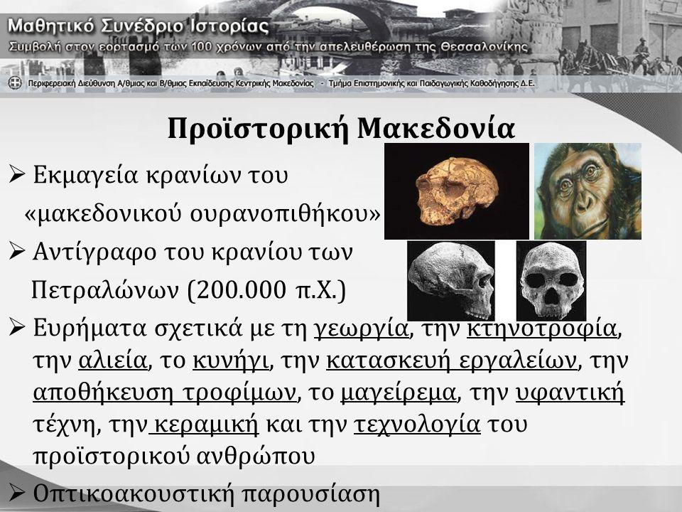 Προϊστορική Μακεδονία  Εκμαγεία κρανίων του «μακεδονικού ουρανοπιθήκου»  Αντίγραφο του κρανίου των Πετραλώνων (200.000 π.Χ.)  Ευρήματα σχετικά με τ