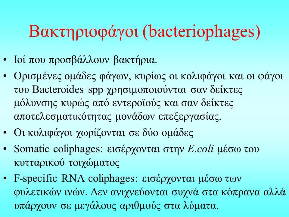 Βακτηριοφάγοι (bacteriophages) Ioί που προσβάλλουν βακτήρια. Ορισμένες ομάδες φάγων, κυρίως οι κολιφάγοι και οι φάγοι του Bacteroides spp χρησιμοποιού