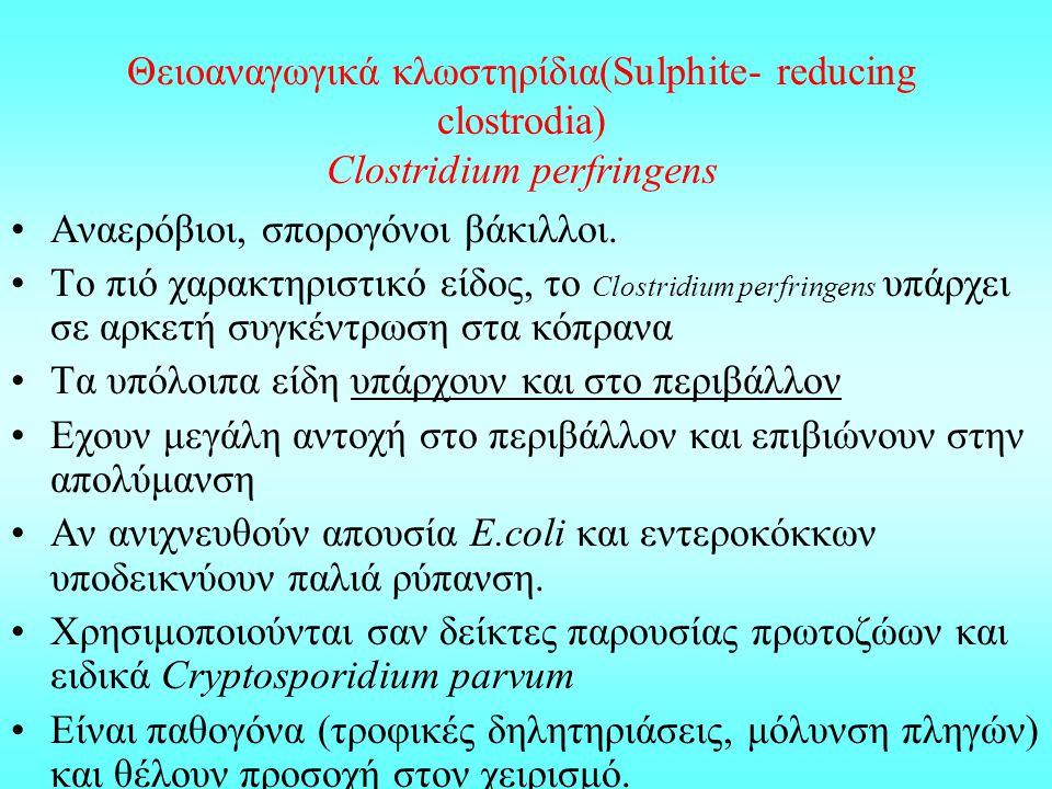 Θειοαναγωγικά κλωστηρίδια(Sulphite- reducing clostrodia) Clostridium perfringens Αναερόβιοι, σπορογόνοι βάκιλλοι. Το πιό χαρακτηριστικό είδος, το Clos
