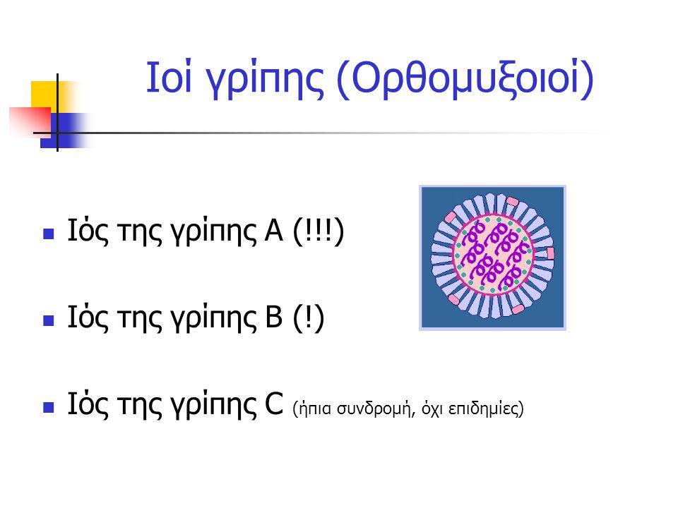 Ιοί γρίπης (Ορθομυξοιοί) Ιός της γρίπης Α (!!!) Ιός της γρίπης Β (!) Ιός της γρίπης C (ήπια συνδρομή, όχι επιδημίες)