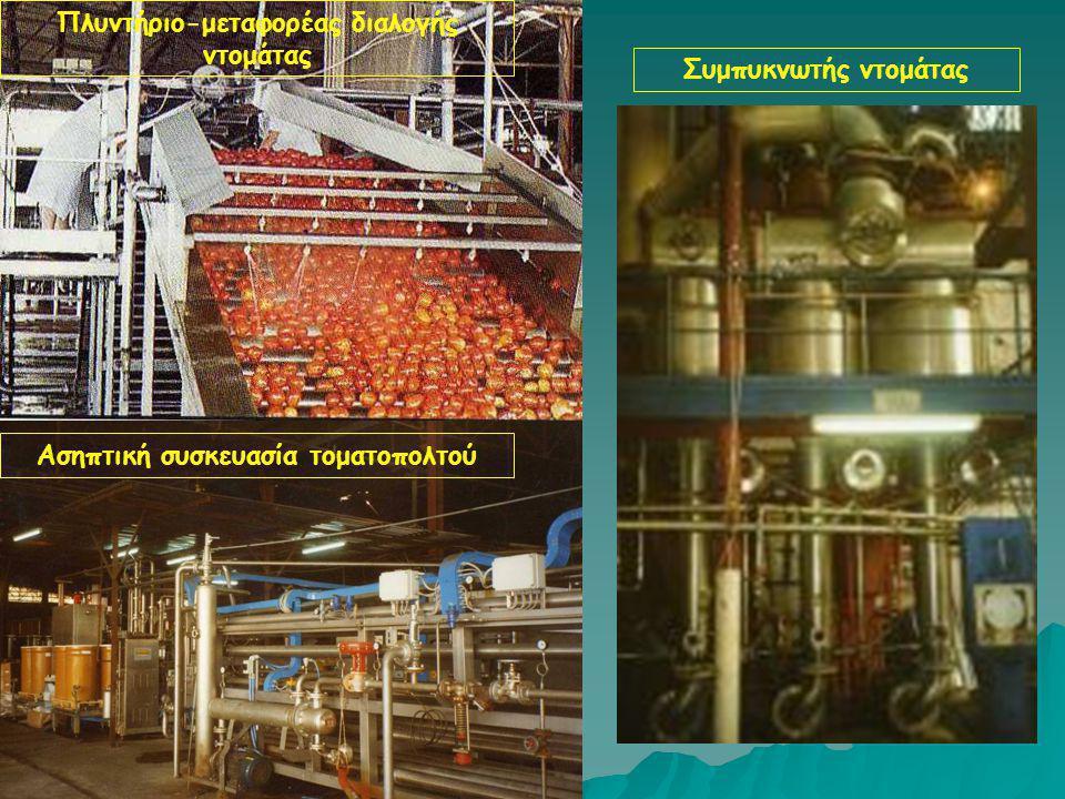 Πλυντήριο-μεταφορέας διαλογής ντομάτας Ασηπτική συσκευασία τοματοπολτού Συμπυκνωτής ντομάτας