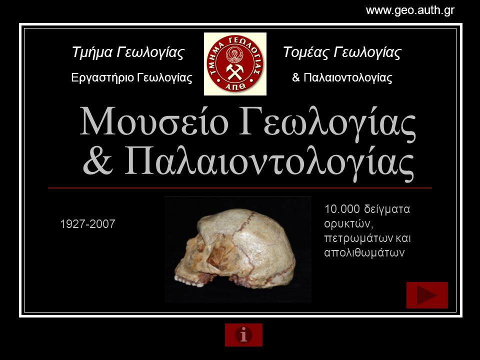 Μουσείο Γεωλογίας & Παλαιοντολογίας Τμήμα Γεωλογίας Τομέας Γεωλογίας Εργαστήριο Γεωλογίας & Παλαιοντολογίας www.geo.auth.gr 10.000 δείγματα ορυκτών, π