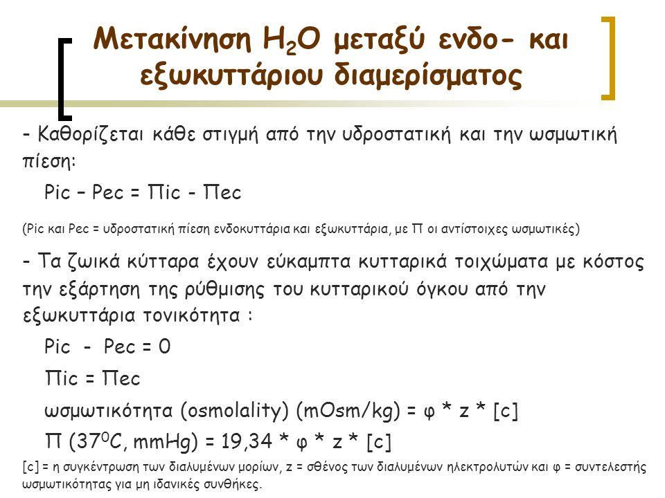 - Καθορίζεται κάθε στιγμή από την υδροστατική και την ωσμωτική πίεση: Ρic – Ρec = Πic - Πec (Ρic και Ρec = υδροστατική πίεση ενδοκυττάρια και εξωκυττά