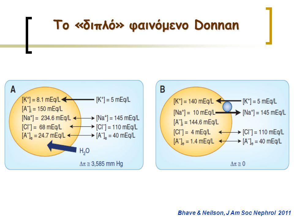 Το «διπλό» φαινόμενο Donnan Bhave & Neilson, J Am Soc Nephrol 2011