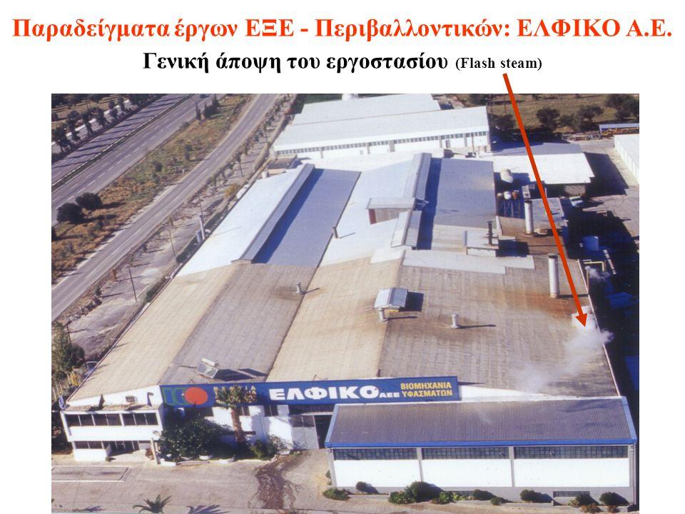 Παραδείγματα έργων ΕΞΕ - Περιβαλλοντικών: ΕΛΦΙΚΟ Α.Ε. Γενική άποψη του εργοστασίου (Flash steam)