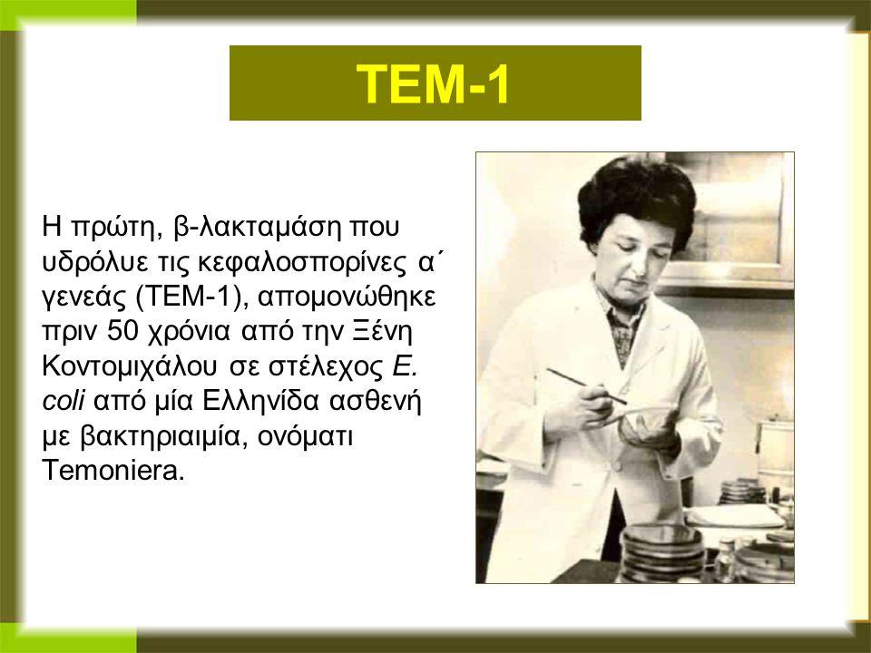 TEM-1 Η πρώτη, β-λακταμάση που υδρόλυε τις κεφαλοσπορίνες α΄ γενεάς (ΤΕΜ-1), απομονώθηκε πριν 50 χρόνια από την Ξένη Κοντομιχάλου σε στέλεχος E. coli