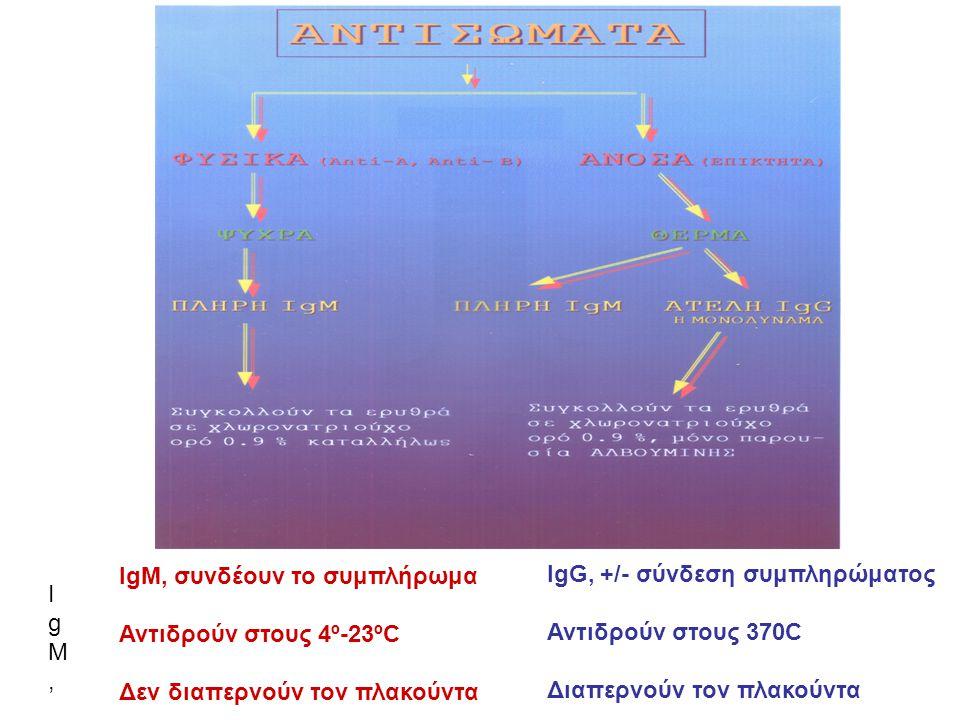 IgM, συνδέουν το συμπλήρωμαΑντιδρούν στους 4º-23ºCΔεν περνούν τον πλακούνταIgM, συνδέουν το συμπλήρωμαΑντιδρούν στους 4º-23ºCΔεν περνούν τον πλακούντα IgM, συνδέουν το συμπλήρωμα Αντιδρούν στους 4º-23ºC Δεν διαπερνούν τον πλακούντα IgG, +/- σύνδεση συμπληρώματος Αντιδρούν στους 370C Διαπερνούν τον πλακούντα