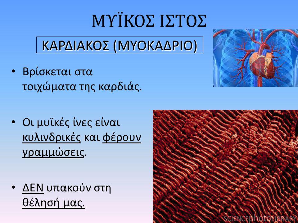 Βρίσκεται στα τοιχώματα της καρδιάς.Οι μυϊκές ίνες είναι κυλινδρικές και φέρουν γραμμώσεις.
