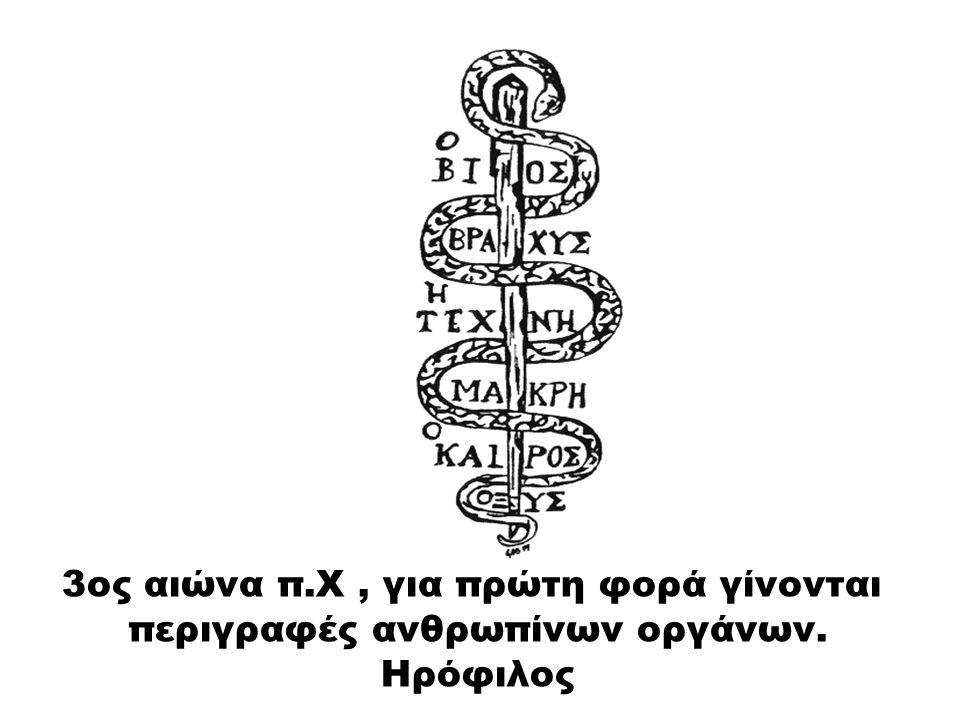 3ος αιώνα π.Χ, για πρώτη φορά γίνονται περιγραφές ανθρωπίνων οργάνων. Ηρόφιλος