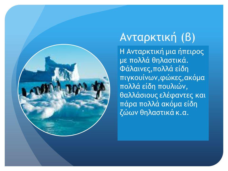 Aνταρκτική (β) Η Ανταρκτική μια ήπειρος με πολλά θηλαστικά. Φάλαινες,πολλά είδη πιγκουίνων,φώκες,ακόμα πολλά είδη πουλιών, θαλλάσιους ελέφαντες και πά
