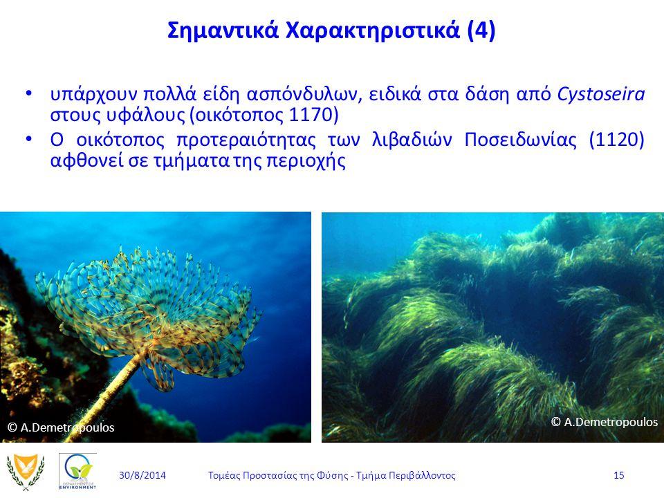 υπάρχουν πολλά είδη ασπόνδυλων, ειδικά στα δάση από Cystoseira στους υφάλους (οικότοπος 1170) Ο οικότοπος προτεραιότητας των λιβαδιών Ποσειδωνίας (112