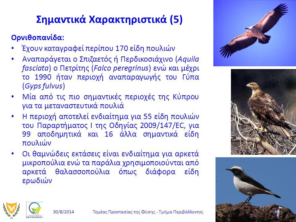 Σημαντικά Χαρακτηριστικά (5) Ορνιθοπανίδα: Έχουν καταγραφεί περίπου 170 είδη πουλιών Αναπαράγεται ο Σπιζαετός ή Περδικοσιάχινο (Aquila fasciata) ο Πετ