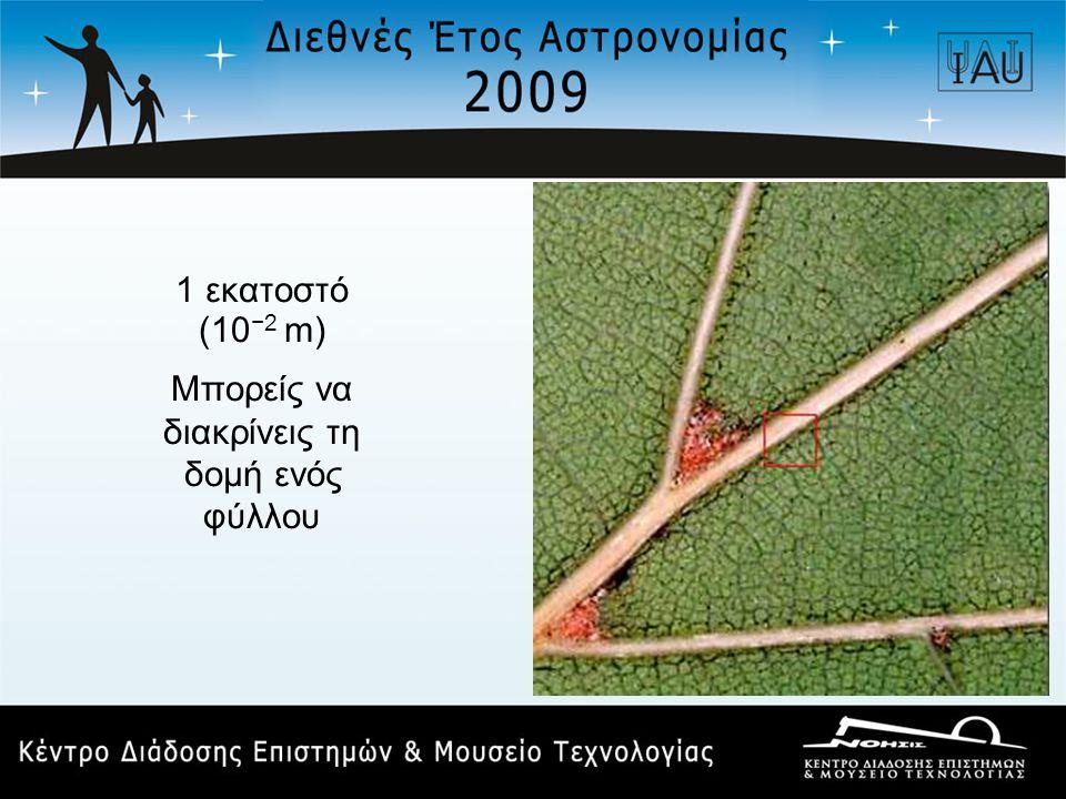 1 εκατοστό (10 −2 m) Μπορείς να διακρίνεις τη δομή ενός φύλλου