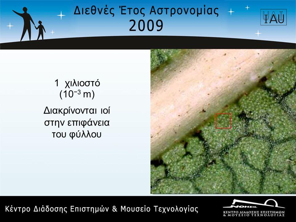 1 χιλιοστό (10 −3 m) Διακρίνονται ιοί στην επιφάνεια του φύλλου