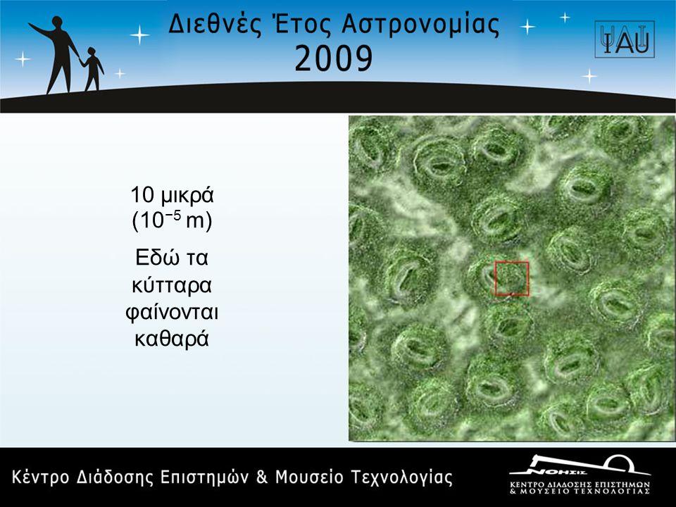 10 μικρά (10 −5 m) Εδώ τα κύτταρα φαίνονται καθαρά