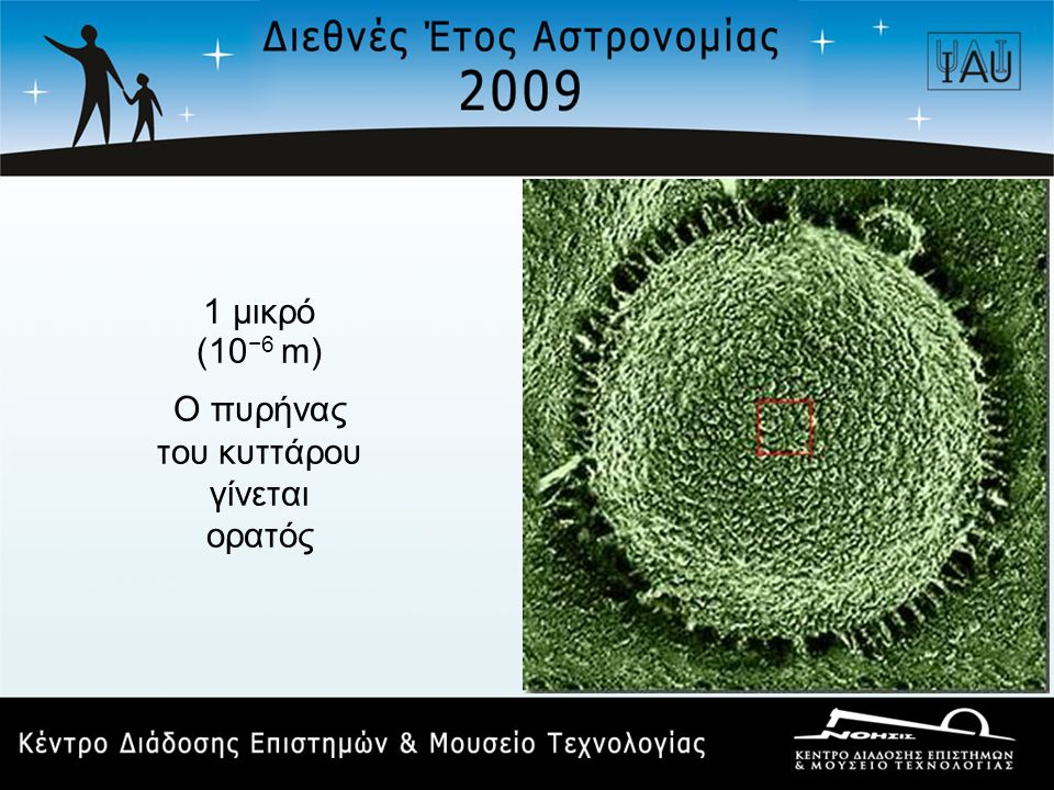 1 μικρό (10 −6 m) Ο πυρήνας του κυττάρου γίνεται ορατός