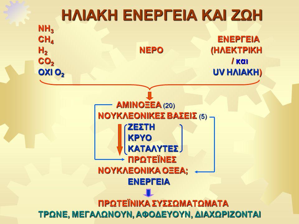 ΗΛΙΑΚΗ ΕΝΕΡΓΕΙΑ ΚΑΙ ΖΩΗ ΝΗ 3 CH 4 ΕΝΕΡΓΕΙΑ H 2 NEΡΟ (ΗΛΕΚΤΡΙΚΗ CO 2 / και OXI O 2 UV ΗΛΙΑΚΗ) ΑΜΙΝΟΞΕΑ (20) ΑΜΙΝΟΞΕΑ (20) ΝΟΥΚΛΕΟΝΙΚΕΣ ΒΑΣΕΙΣ (5) ΖΕΣΤΗΚΡΥΟΚΑΤΑΛΥΤΕΣΠΡΩΤΕΪΝΕΣ ΝΟΥΚΛΕΟΝΙΚΑ ΟΞΕΑ; ΕΝΕΡΓΕΙΑ ΠΡΩΤΕΪΝΙΚΑ ΣΥΣΣΩΜΑΤΩΜΑΤΑ ΤΡΩΝΕ, ΜΕΓΑΛΩΝΟΥΝ, ΑΦΟΔΕΥΟΥΝ, ΔΙΑΧΩΡΙΖΟΝΤΑΙ